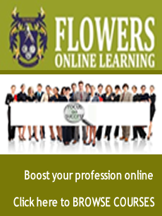 Flowers Online Learning